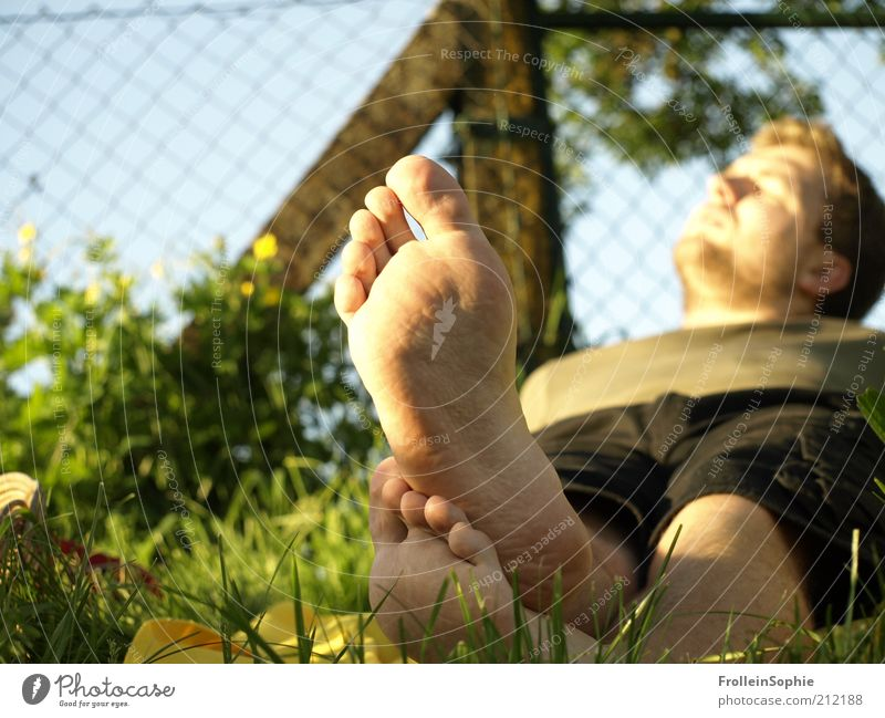 sunbathing Vacation & Travel Summer Sunbathing Human being Masculine Feet 1 Spring Beautiful weather Meadow Barefoot Relaxation To enjoy Lie Natural Warmth