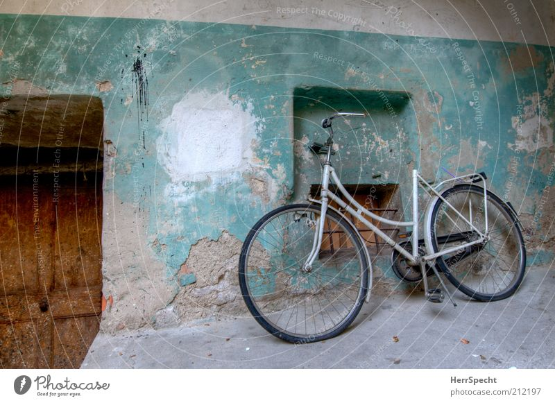 Saddleless Deserted Building Wall (barrier) Wall (building) Window Door Backyard Plaster Colour Bicycle Old Authentic Dirty Broken Brown Gray White Patina