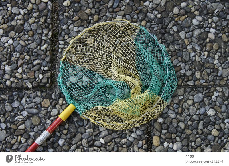 """caught nothing"" Fishing (Angle) Catch Catching net Fishery Fishing net Leisure and hobbies Landing net children's nets Ocean Net Fish trap Stone slab"