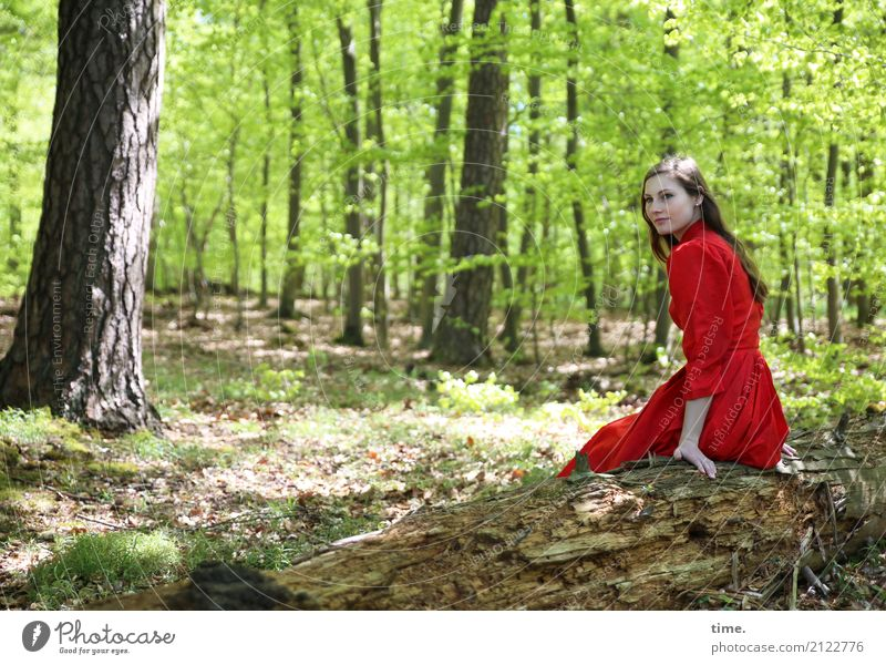 . Feminine Woman Adults 1 Human being Spring Plant Tree Forest Dress Brunette Long-haired Observe Relaxation To hold on Looking Sit Free Friendliness Beautiful