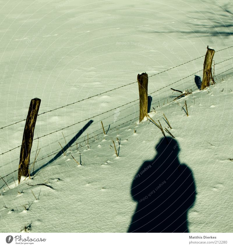 Human being Vacation & Travel Winter Meadow Snow Weather Ice Leisure and hobbies Hiking Esthetic Frost Pasture Fence Beautiful weather Snowscape Take a photo