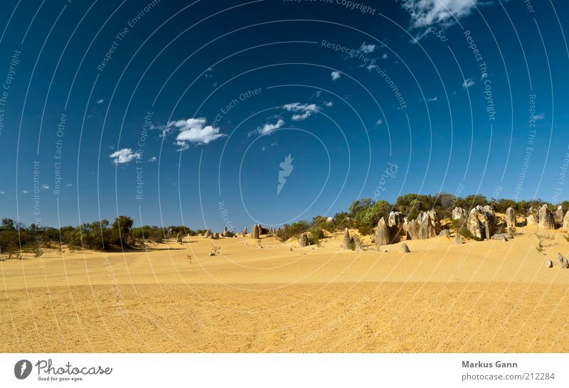 desert Vacation & Travel Nature Landscape Sand Sky Clouds Climate Desert Yellow Australia Minerals Nambung National Park Outback Pinnacles Dry Blue Stone Rock