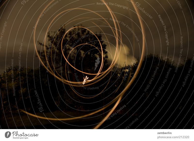 Lights in the garden Lifestyle Elegant Style Design Joy Playing Night life Flexible August Long exposure Flashlight Easy Spiral blink Colour photo