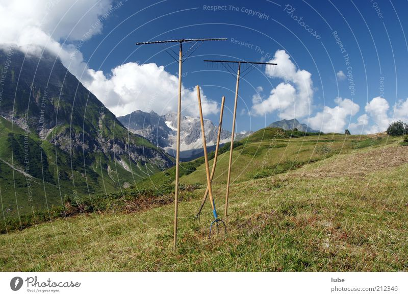 Break at the hay work Summer Mountain Tool Nature Landscape Sky Sun Climate Beautiful weather Meadow Alps Freedom Hay Hay harvest Fork Forest of Bregenz