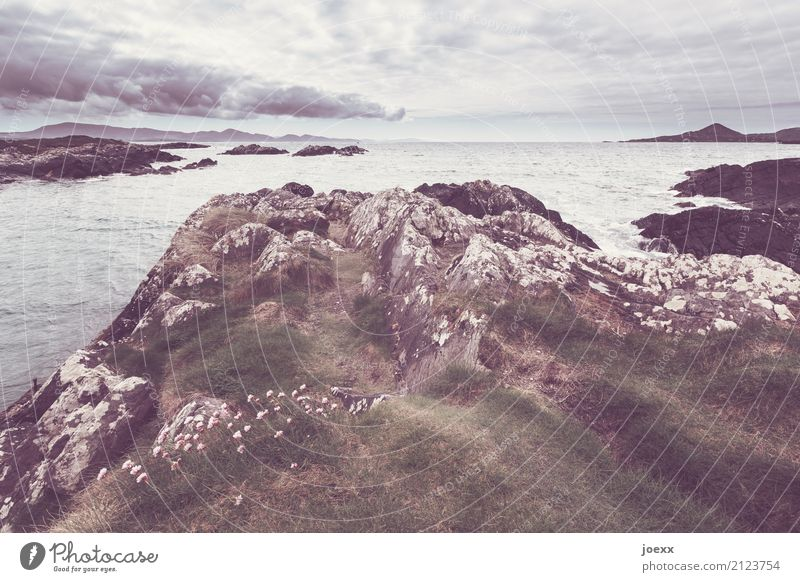 Sky Green Landscape Clouds Lanes & trails Coast Brown Rock Horizon Idyll Island Wanderlust