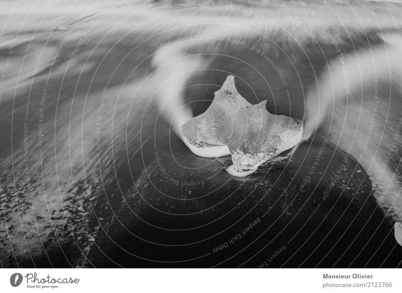 White Ocean Beach Black Coast Movement Ice Waves Esthetic Frost Iceland Glacier Iceberg