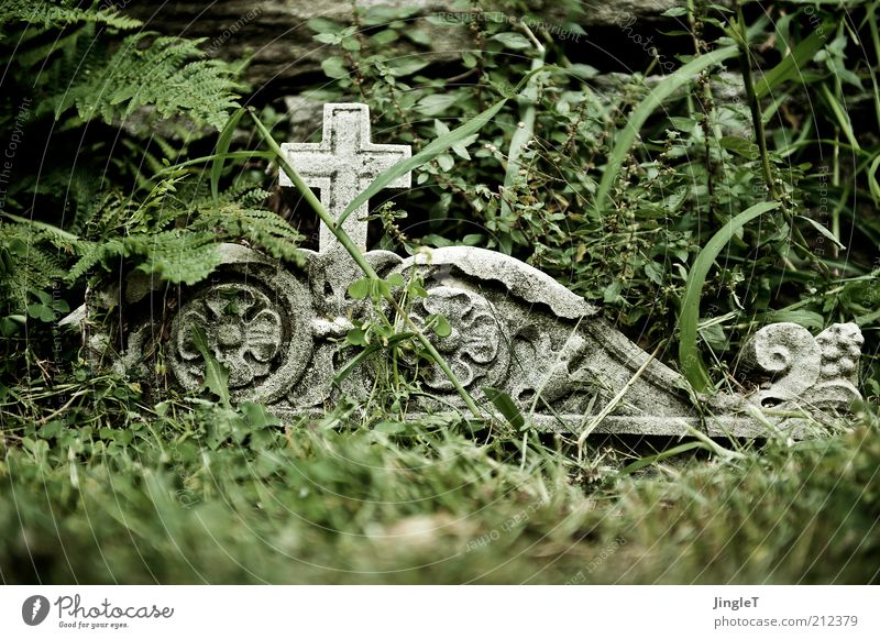 R U H E ! ! Summer Sign Sadness Grief Death Loneliness Calm Colour photo Exterior shot Tomb Christian cross Ornament Ornamental Transience Tombstone Remember