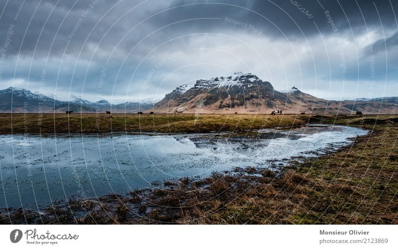 Iceland Water Sky Clouds Storm clouds Autumn Winter Weather Bad weather Wind Gale Emotions Moody Mountain Dramatic Field Colour photo Subdued colour