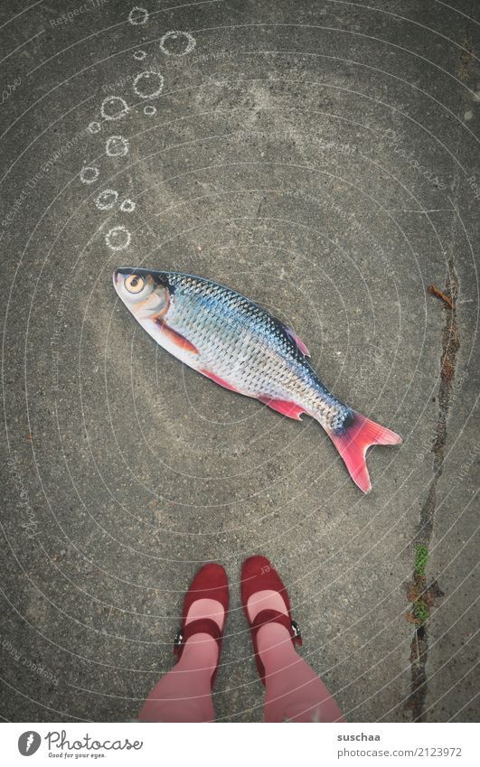 fish on land (2) Fish Mock-up Paper False Surrealism Strange Legs Feet Footwear Stockings Stand Exterior shot feminine Street Pink Red Bubble