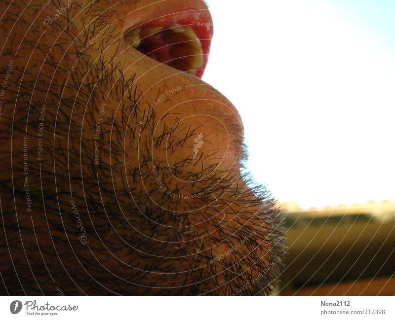 AAAAhhhhhrrrg.... Masculine Man Adults Mouth Lips Facial hair Old Breathe Scream Growth Beard hair Black-haired Teeth To talk Young man Colour photo