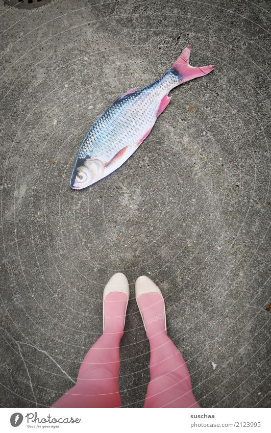 fish on land Fish Mock-up Paper False Surrealism Strange Legs Feet Footwear Stockings Stand Exterior shot feminine Street Pink