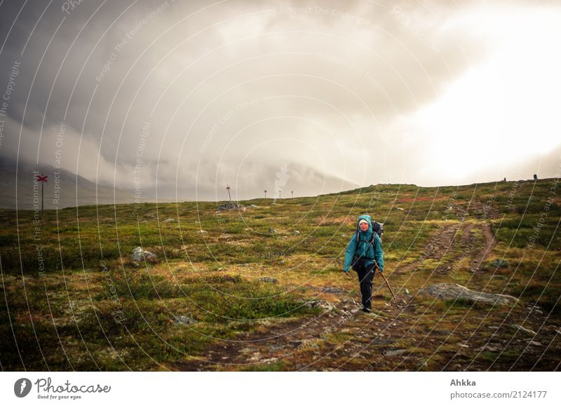 rainy days Vacation & Travel Adventure Mountain Hiking Young woman Youth (Young adults) Nature Landscape Elements Autumn Bad weather Storm Wind Gale Rain