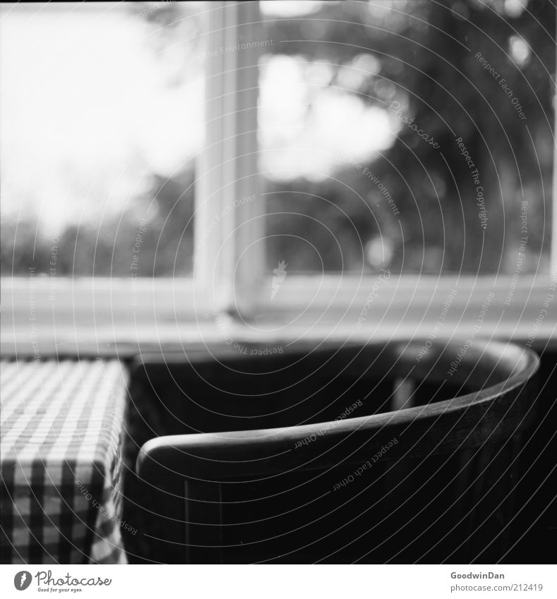 analog conservatory Chair Table Winter garden Window Window pane Wood Gloomy Warmth Emotions Moody Contentment Spring fever Black & white photo Interior shot