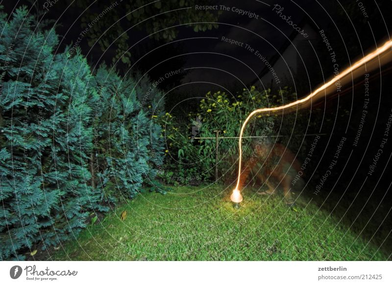 Flashing again Garden 1 Human being Landscape Plant Bright Hedge Grass Lamp Night Hazy Ghosts & Spectres  Long exposure Tracer path Colour photo Exterior shot