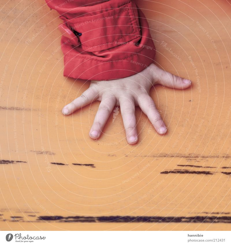 Human being Child Hand Red Yellow Playing Small Fingers Leisure and hobbies Touch Infancy To hold on Jacket 5 Cute