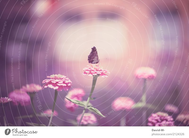 girlish Art Work of art Painting and drawing (object) Environment Nature Landscape Plant Animal Sun Spring Summer Climate Climate change Weather