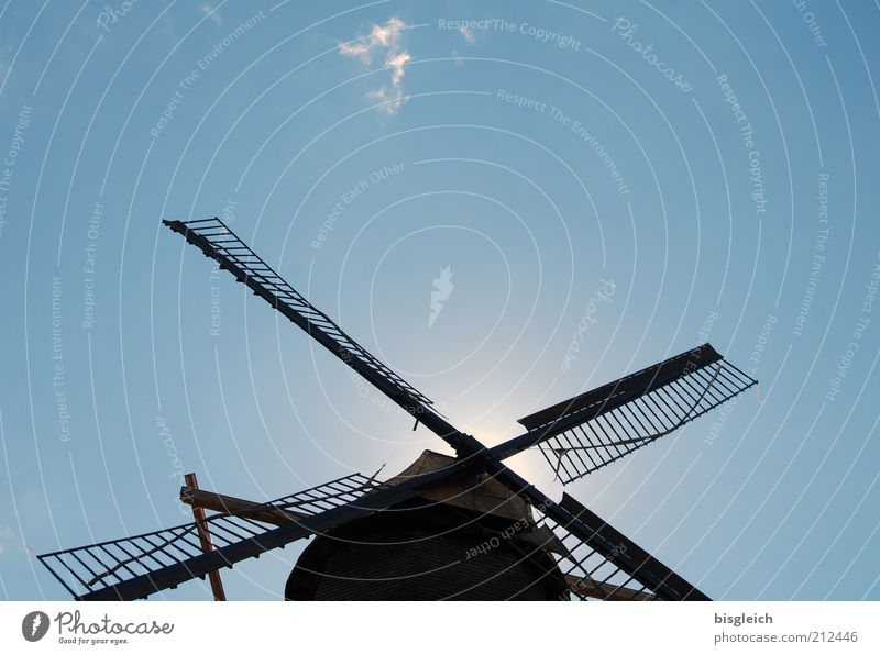 mill Mill Craft (trade) Windmill Blue Sky Diligent Colour photo Exterior shot Copy Space top Worm's-eye view Sunlight Blue sky Cloudless sky Windmill vane