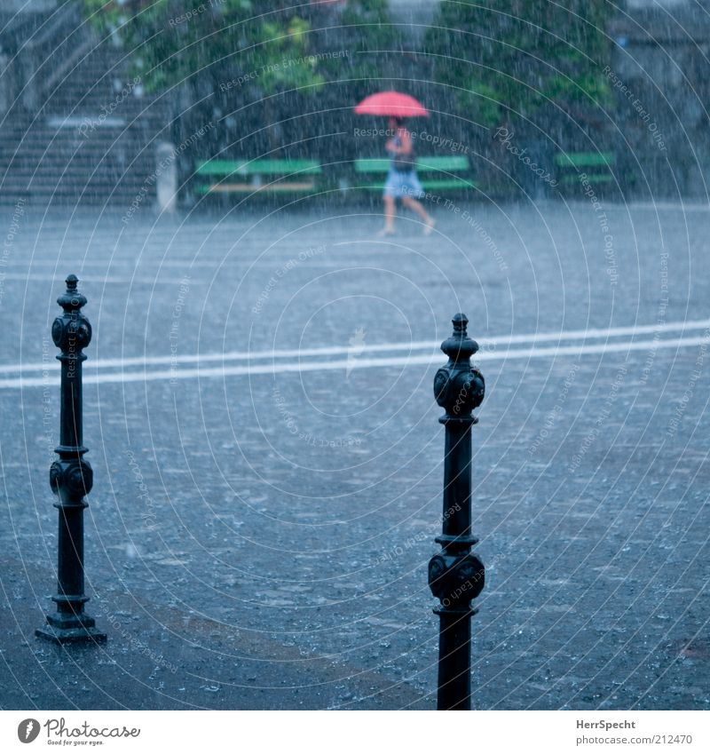 summer rain 1 Human being Water Drops of water Bad weather Storm Rain Thunder and lightning Town Going Wet Gray Green Red Umbrella Places Cobblestones Bollard