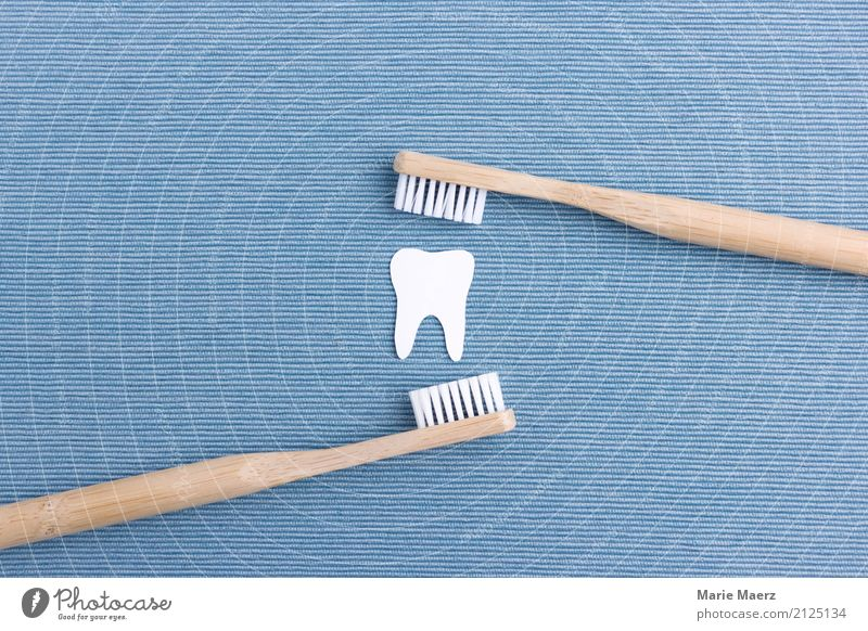 brush one's teeth Healthy Toothbrush Cleaning Fresh Sustainability Blue White Virtuous Conscientiously Cleanliness Set of teeth Dental care Wood Colour photo