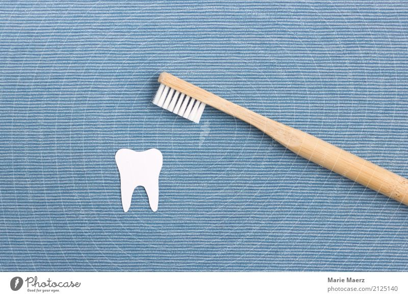 Blue White Healthy Wood Health care Glittering Esthetic Clean Cleaning Personal hygiene Sustainability Dental care Dentist Cleanliness Toothbrush