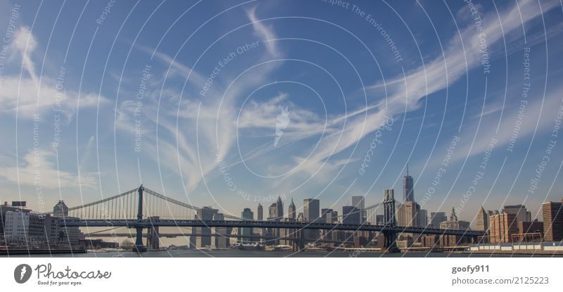 Manhattan Bridge and Skyline Elegant Vacation & Travel Tourism Trip Far-off places Freedom Sightseeing City trip Beautiful weather River New York City USA Town