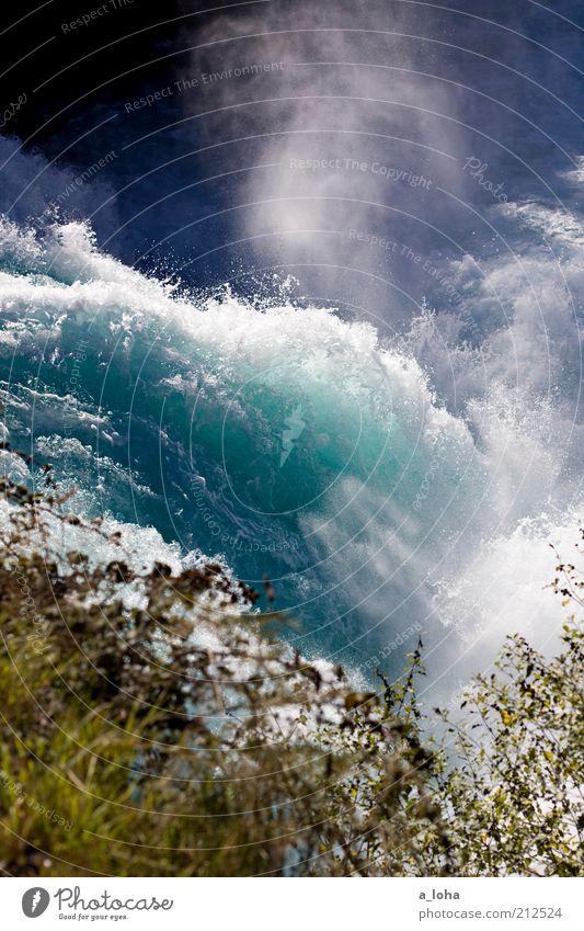Nature Blue Loneliness Far-off places Grass Movement Waves Power Wet Trip Tourism Natural Bushes Might River Elements