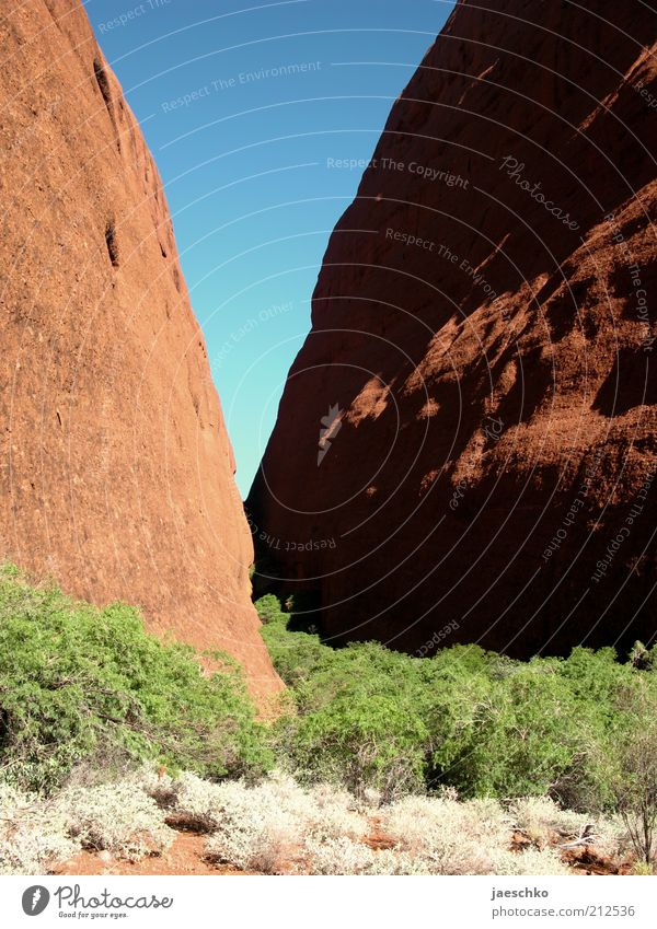 V Environment Nature Elements Rock Canyon Steppe Red Kata Tjuta Stone Cervice Australia Dry Hot Warmth Geology fold mountains Sandstone Bushes Blue Green