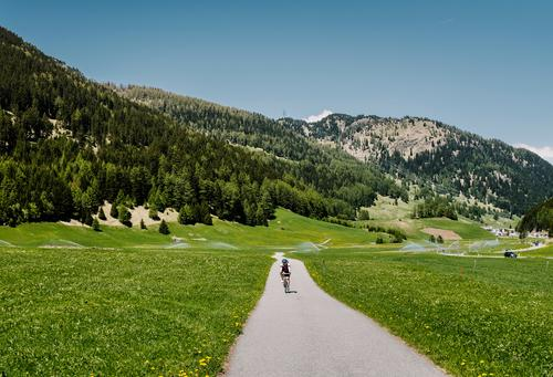 Just in Italia Vacation & Travel Cycling tour Summer 18 - 30 years Youth (Young adults) Adults Nature Landscape Beautiful weather Meadow Alps Mountain