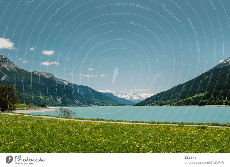 Reschensee Nature Landscape Sun Summer Beautiful weather Meadow Alps Mountain Snowcapped peak Lake Fresh Blue Green Loneliness Relaxation Colour Idyll