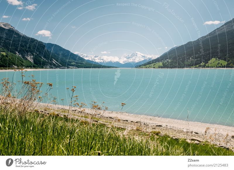 Reschensee Environment Nature Landscape Sky Summer Beautiful weather Bushes Meadow Alps Mountain Lakeside Far-off places Gigantic Natural Blue Green Turquoise