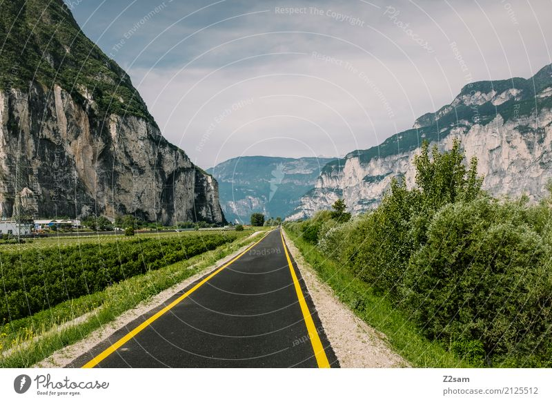 bicycle road Nature Landscape Sky Sun Summer Beautiful weather Bushes Alps Mountain Street Natural Blue Green Loneliness Idyll Center point Sustainability