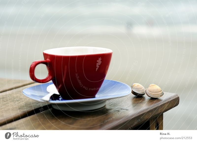 Ocean Red Beach Calm Relaxation Emotions Happy Contentment Table Authentic Joie de vivre (Vitality) Cup Mussel Safety (feeling of) Harmonious Attachment