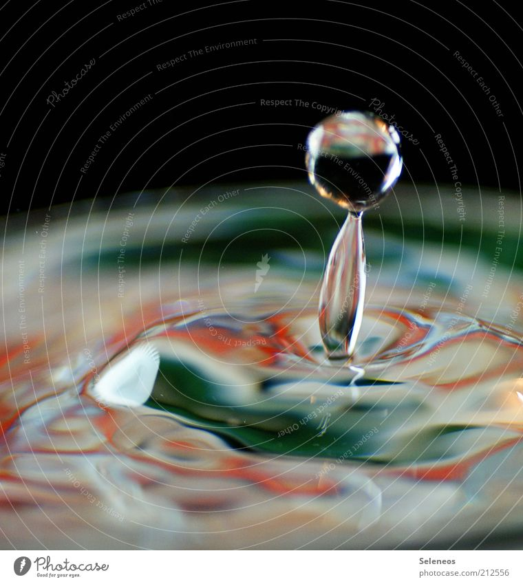dripping wet Drinking water Water Drops of water Movement Fluid Fresh Small Wet Natural Round Clean Speed Uniqueness Pure Colour photo Interior shot Close-up