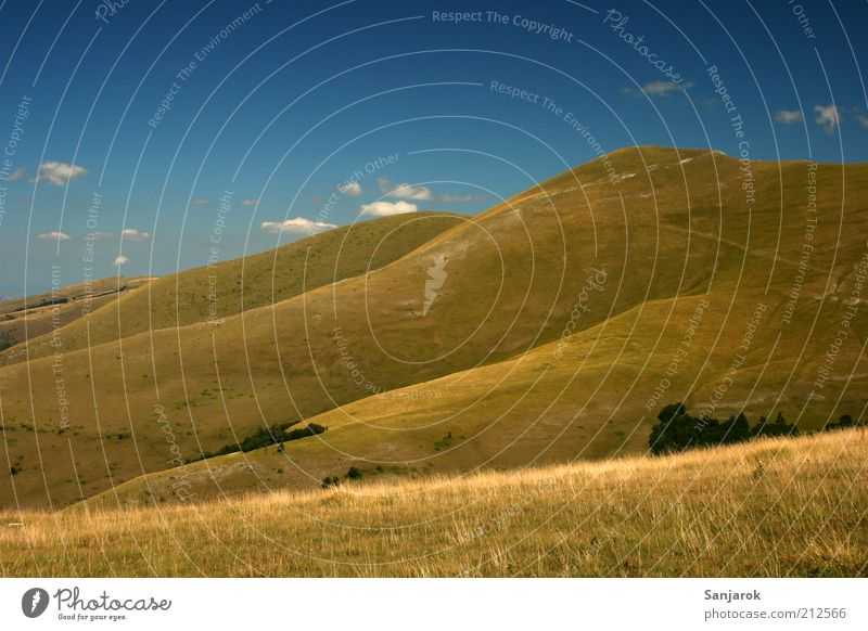 Dream of the Teletubbie Nature Wanderlust Alpine pasture Mountain Grassland Far-off places Freedom Peak Summer Hill Italy Landscape Environment Colour photo