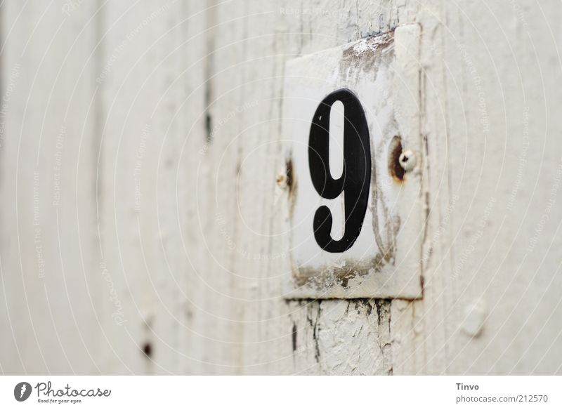 House number 9 on white wooden wall Digits and numbers Signs and labeling Old Transience Change Wooden door Painted Coat of paint White Flake off Weathered