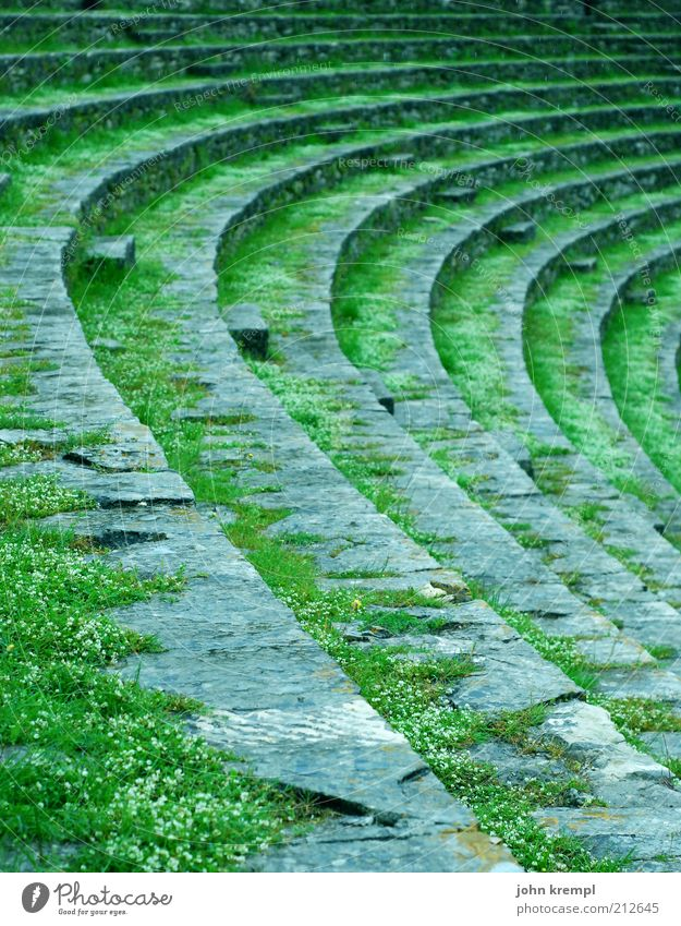 round shelf Theatre Stage Culture pula Croatia Amphitheatre Arena Tourist Attraction Monument Old Green Seating Round Curve Ruin Overgrown Weathered Ancient