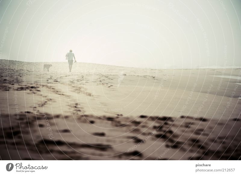 Man with dog in fog Masculine Adults 1 Human being Summer Bad weather Fog Beach Ocean Dog Going Gloomy Emotions Calm Loneliness Relationship Exterior shot