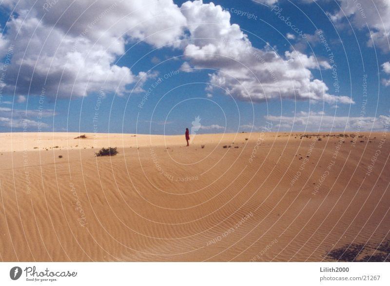 Human being Sky Sun Clouds Sand Desert Beach dune