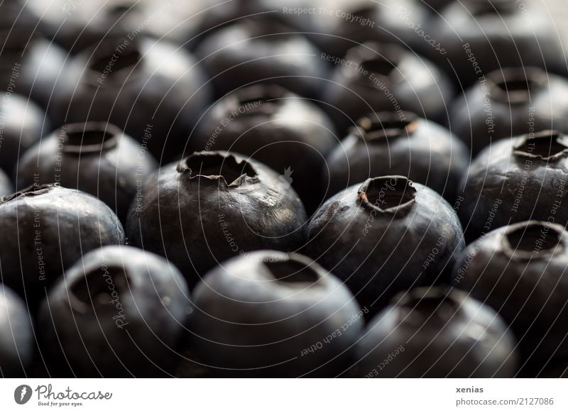 blueberries Blueberry Fruit Organic produce Fresh Healthy cute Black superfood Vitamin Close-up Detail xenias