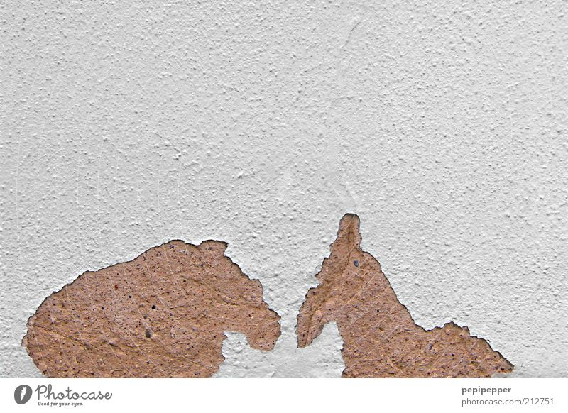 White Animal House (Residential Structure) Wall (building) Stone Wall (barrier) Couple Friendship Brown Wild animal Broken Exceptional Horse Communicate Sign