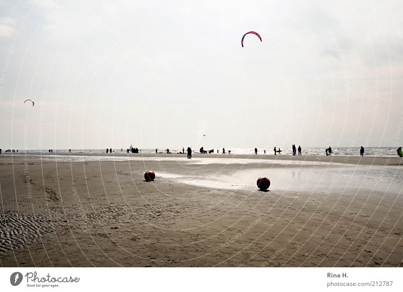 Water Sky Ocean Joy Beach Vacation & Travel Relaxation Autumn Group Air Contentment Coast Wind Flying Horizon Trip