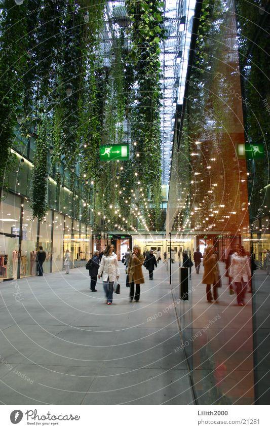 Five courtyards Munich Downtown Human being Pedestrian Shopping Green Liana Reflection Architecture Glass Corridor