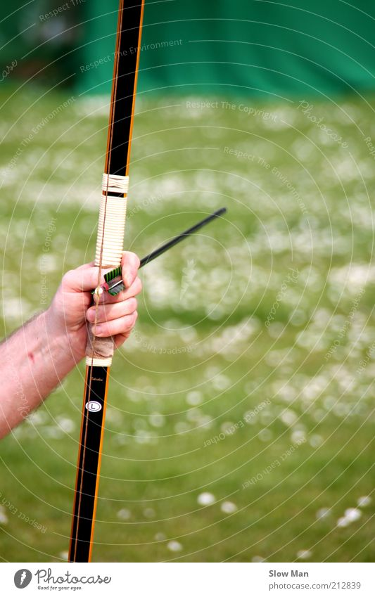 Nature Hand Meadow Sports Wood Fly Target Arrow Concentrate Hunting Force Arch Bow Door handle Hunter Weapon
