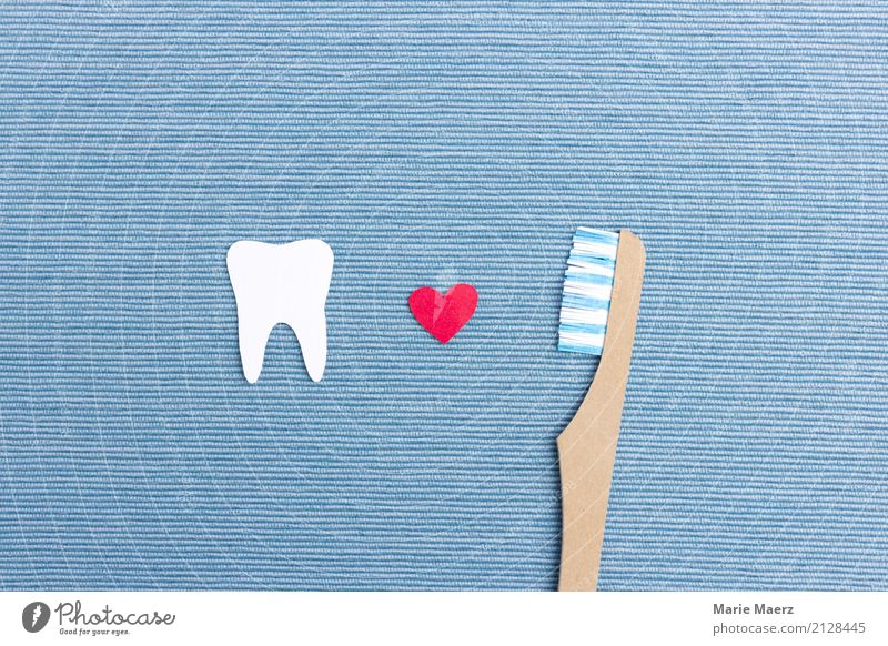 brush one's teeth Personal hygiene Teeth Toothbrush Cleaning Fresh Glittering Happy Beautiful Blue White Virtuous Disciplined Healthy Dental care Dentist
