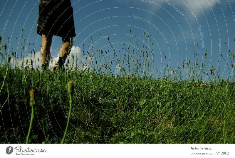 Human being Sky Nature Blue Green Plant Summer Flower Clouds Black Meadow Environment Landscape Grass Legs Weather