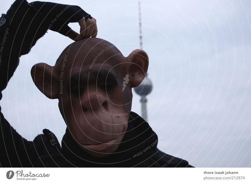 Human being Hand Head Think Funny Wild animal Crazy Tower Meditative Animal face Berlin Mask Stupid Animalistic Distress