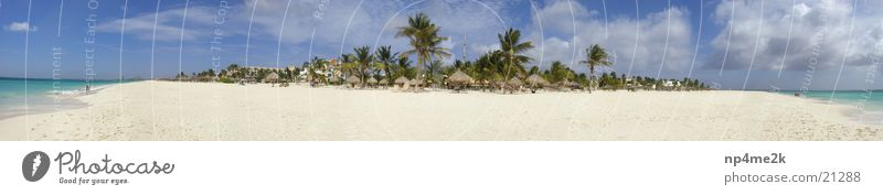 Beach Aruba 2 Palm tree Deckchair Wide angle Sand Graffiti paradise