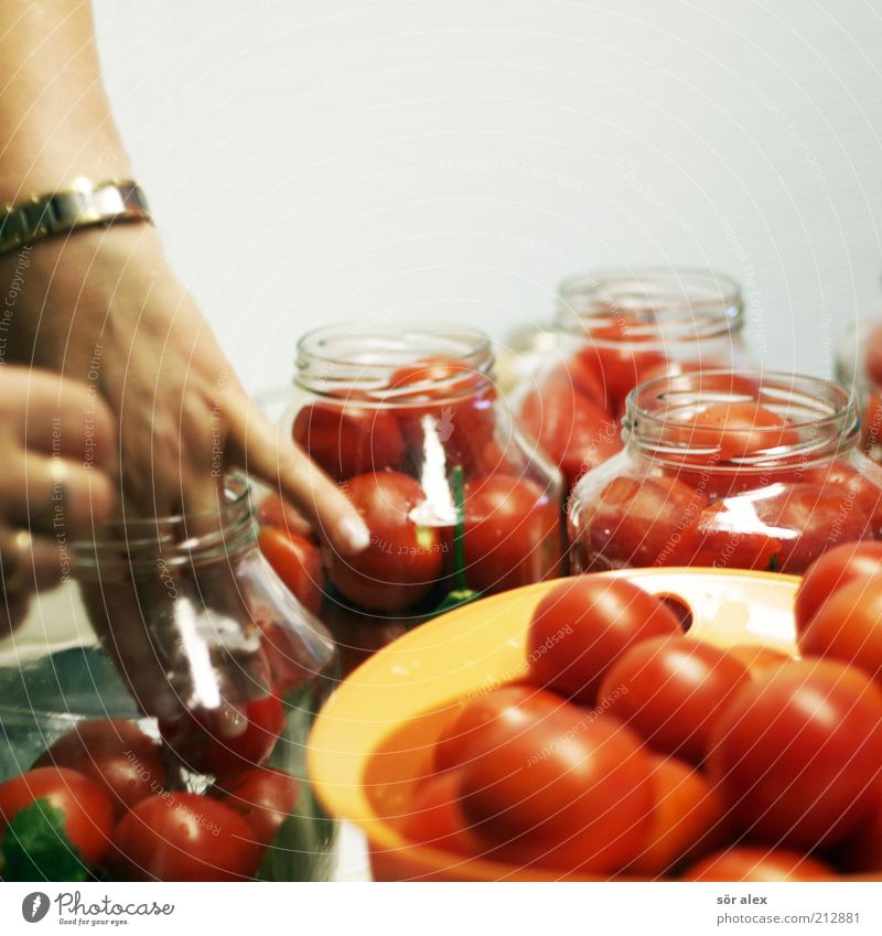 Put in tomatoes Food Vegetable Tomato Hand Preserving jar tomato jar Glass Work and employment Delicious Red White Delicacy Independence Conserve pot Stability