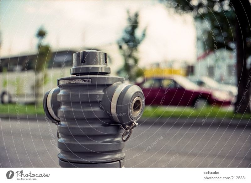 Hydrant in Grau Green White Tree Red Loneliness Street Gray Car Power Esthetic Europe Round Simple Logistics Serene Traffic infrastructure