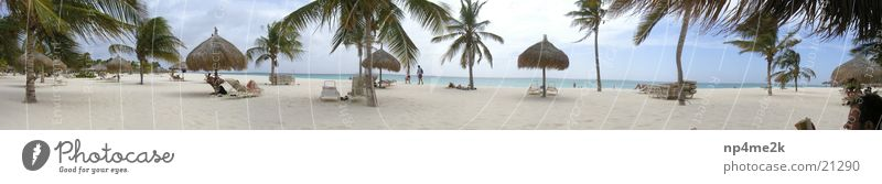 Aruba Beach Palm tree Deckchair Wide angle Sand Graffiti